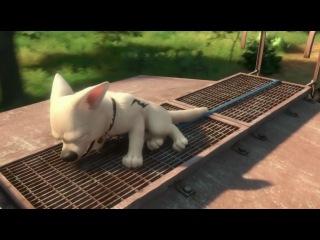 Вольт (Полнометражный мультфильм Disney, 2008)